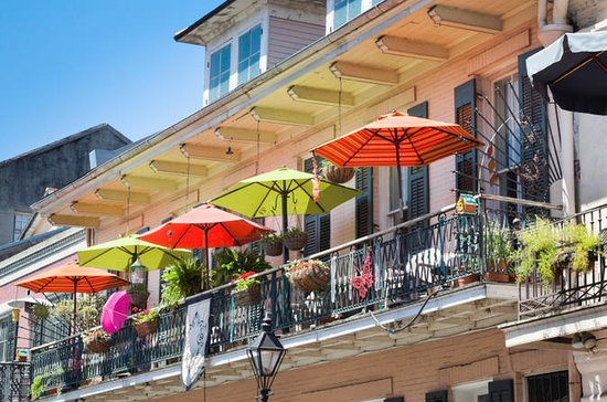 best tours in new orleans reviews